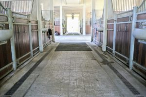 The stable is now very, very clean. My horses, donkeys and pony will be very happy.
