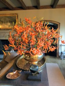 Here is an arrangement of tiger lilies from my Bedford, New York farm. If you recall, we picked dozens of these beautiful blooms from my long pergola garden. For more photos of the tiger lily arrangements around Skylands, see my Instagram page @MarthaStewart48.