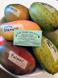 I received a box of wonderful mangoes from Pine Island Tropicals in southwest Florida. Pine Island Tropicals has been selling tropical organic plants, fruits and homemade food products since 1993. They were one of our American Made Honorees in 2015. We all enjoyed these mangoes - each labeled with its variety. http://www.pineislandtropicalsnursery.com/
