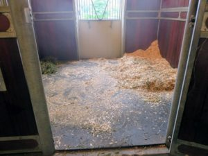 The first step to cleaning the stalls is to remove all the feeding and bedding, and to sweep as much of it by hand.