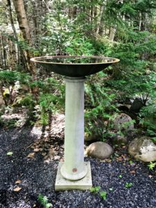This is a Ucello birdbath. I love bird baths. I don't think enough gardeners realize how important a birdbath is to the bird population. It affords a place to cool off, bathe, and drink. Of course, the water should be changed daily.