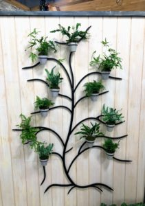 Here is a black Metal Wall Tree - any small plants look so great displayed on it. Did you get one of these for your home?