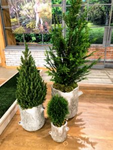 These planters are perfect for both indoor and outdoor use. They look great with shade and sun loving plants in all locations. And to clean, just wipe with a dry cloth.