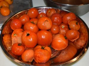 Next, they're removed from the ice-water. These tomatoes are now ready to be peeled and seeded – see the skins? They are already separating.