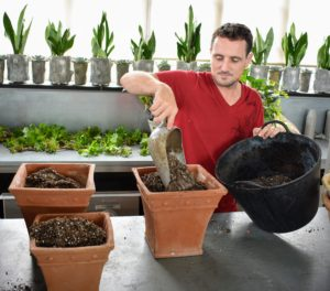 Succulents are best planted in clay or terra cotta pots with proper drainage holes because the vessels dry quickly, and prevent water from building up. The next day, Ryan fills three pots with potting soil mixed right here at the farm.
