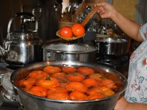 The tomatoes cool in the ice as Sanu removes the rest of the batch from the pot.