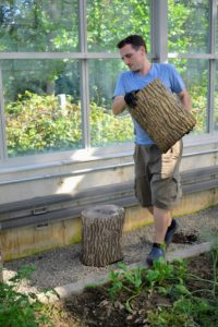 I use these stumps, made from felled trees on the property, to hold pots and to provide good use of space in my greenhouses. Ryan carries one over to the trees to use as supports for the pots.