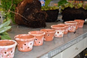 Orchid pots are specially designed to have a lot of holes for good drainage and aeration. These pots have already been well-cleaned.