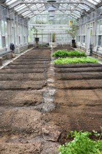 Here, the beds are perfectly measured, edged and ready for planting.