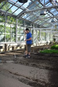It doesn't take long to sow several beds of seeds. The important thing is to have good, nutrient-rich soil.