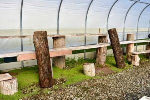 I always recycle felled trees whenever possible. These logs and lumber planks make excellent and sturdy shelves. The pieces were milled right here at my farm. I shared the process on a previous blog. http://www.themarthablog.com/2015/08/repurposing-felled-trees-at-my-farm.html