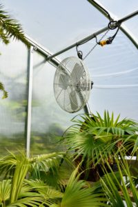 This hoop house has three large fans positioned up high to provide better air circulation when needed.