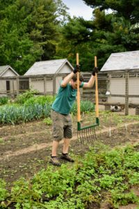 For this task, Ryan uses Johnny's Selected Seeds nine-tine, 20-inch wide broadfork. These deep-tillage tools, designed long ago in Europe and redeveloped by Eliot Coleman, make turning the soil almost effortless because it uses body weight to insert and maneuver the tool.