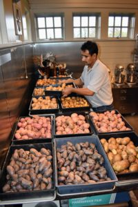 Carlos then returns them to the crates - each one on a stainless steel tray. These potatoes will continue to dry out here in my Flower Room.
