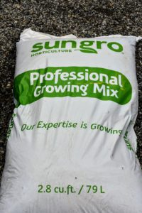 For these trees, Ryan is using Sungro Professional Growing Mix - formulated with sphagnum peat moss, coarse grade perlite, gypsum, Dolomitic lime, and a long-lasting wetting agent.