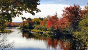 King's Creek is one of Maine's most scenic spots located just over the Thompson Island Bridge toward Bar Harbor. It's a beautiful place any time of year, but the fall colors are especially stunning.