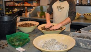Ryan fills another bowl with darker gravel. I like to use natural pebbles, such as pea stone or river rocks, but colored glass or decorative stones also work - so does gravel from your driveway. Just be sure it is well cleaned before placed in the container.