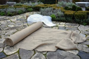 When we can, we reuse burlap from seasons past; however, it is also available in giant rolls of 40-inches or 60-inches wide.