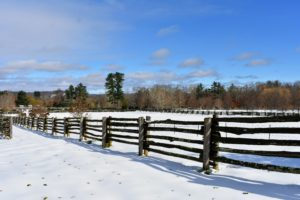 Here is a view across the paddocks. What a difference a day makes - so beautiful and so serene the day after the storm. How did you fare during this first snowstorm of the season? Share your comments with me below.