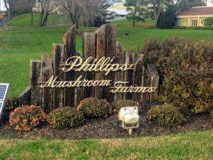 The Phillips Family, now in its third generation, is the largest marketer of specialty mushrooms in the United States. The company distributes more than 35-million pounds of mushrooms each year.