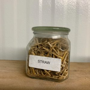 Using straw as a substrate works well for many types of mushroom species and can be much less expensive than other materials.