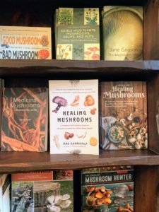 Visitors can browse the many books about mushrooms - how to grown them, cook with them and use them for their many medicinal properties.