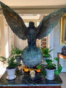 The falcon in my entrance hall was surrounded by touches of autumn - small pumpkins grown right here in my garden.