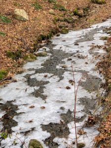 If you were in the Northeast Thanksgiving Day, I'm sure you felt the cold - it only topped in the mid 20s. Back at the farm, the streams were frozen. During a horseback ride over the weekend, I took these interesting photos of the ice.