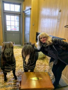 Here is Ann with two of the smallest equine residents - Cookie and Cody, who were rescued earlier this year and are now mascots of the Buxton Farm.