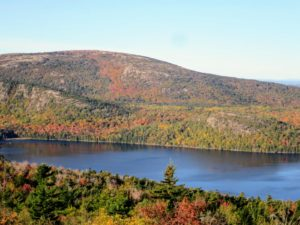 This view looks at Sargent Mountain, the second highest peak in Acadia. It is a popular spot for snowy owls - there have been many sightings of them here.