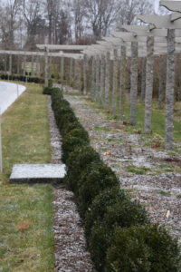 This is the long granite pergola. The light snow can be seen atop the mulch-covered beds and the stone cap of my catch basin. In the summer, the vertical posts support beautiful clematis vines which bloom in white and various shades of purple and blue.