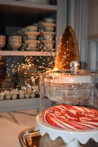 The lights add such a cheerful touch to this bright and festive display.