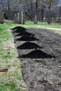 I am always looking for ways to improve the gardens around my farm. These garden beds are already established, and had been cleared of a few filbert trees and blackberry bushes. The first step was to amend the soil, adding a fresh layer of composted manure to what was already there.