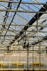 The greenhouses are equipped with state-of-the-art mechanical systems. The roof opens and closes as needed to regulate temperature and overhead sprinkler systems can be programmed to water the crops.
