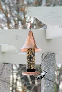 Here is one of the feeders hanging on my pergola. So many gorgeous birds visit my feeders - we have to constantly refill them, especially during these colder months.