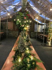 "My book signing was held in Terrain's ""greenhouse"" – this long table was decorated with beautiful and fragrant evergreens and votive candles."