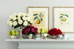 Here is an arrangement of several varieties on the mantel. (Photo by Andrew Ingalls)