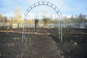 It takes time to spread the compost nicely and evenly, but it looks so beautiful once an area is completed.