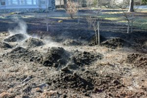Once again, clumps are dropped in rows along the entire bed. Healthy organisms in the compost will be active and produce steam even in winter. This rich compost is generating a lot of steam, but it is all safe, and a great sign of good, usable material.