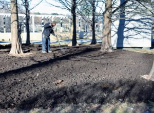 During warmer weather, the added layer helps to keep the soil beneath moist and cool.