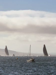 And the total distance of the race is approximately 630-nautical miles from Sydney. Here is another view of the finishing boats with their large black sails.