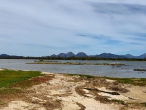 Afterwards, we went to Freycinet Marine Farm located on the Freycinet Peninsula. It is a working oyster farm within an internationally significant wetland and ornithological site.