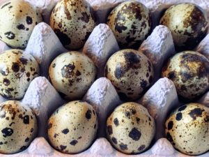 They also had quail eggs. Quail eggs are much smaller than chicken eggs, but also richer in vitamins and minerals. These eggs are farm fresh and barn laid from Kettering Quail in Tasmania.