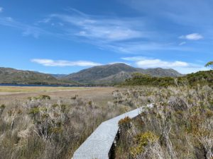 This is part of the Needwonnee Walk, a tribute to the rich indigenous history of the area. It is a half-mile long boardwalk that weaves its way through the forest and buttongrass plains beside Melaleuca Lagoon. The walk is named after the Needwonnee tribe whose homelands extended from Port Davey to New River Lagoon, including the Melaleuca area.