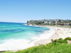 This stroll is one of the most iconic walking trails in Sydney. Many celebrities, such as the late Heath Ledger, owned a home in this area. The panoramic views of the South Pacific Ocean and the coastal cliffs are absolutely breathtaking. Here is Bondi Beach looking in one direction...