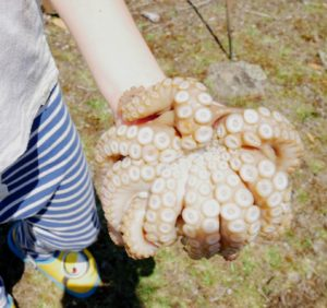 Sarah then showed me and the kids all the foraged vegetables, fruits and seafood that she had collected that morning. Truman was curious about the octopus - here he is holding it.