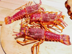 We also had three beautiful lobsters.