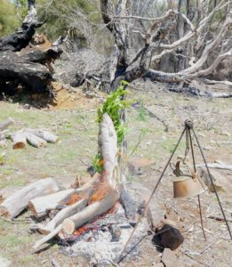 Under the fish, Sarah placed many herbs and made deep cuts through the skin to the backbone and stood the log up vertically along the fire. The radiant heat cooked it slowly and perfectly.