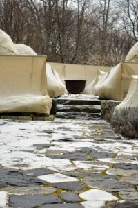 A dusting of snow accumulated on my terrace parterre and on some of the burlap shrouds.