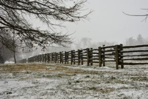 Many of you comment on the fencing. It is 100-year old white spruce fencing from Canada with newer cedar uprights to support it. I love how the snow collects on the fence rails.